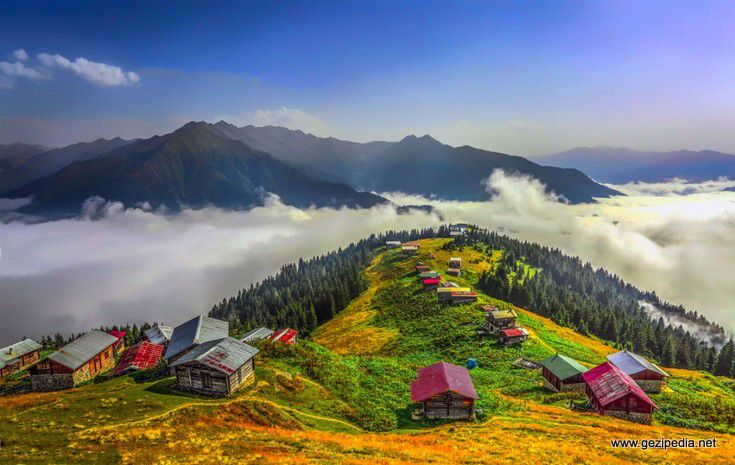 Pokut Yaylası, Sal Yaylası, Şenyuva Köyü, Zipline Turu
